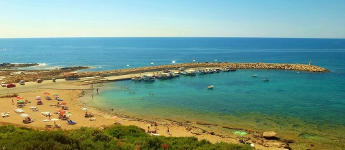 Agios Georgios Coves